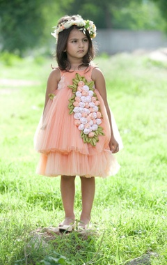 Peach flared net dress with embroidered corsages.
