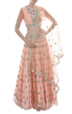 Peach lehenga set with embellished elephant motifs