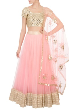 Abhinav Mishra Pink flared net lehenga with blouse