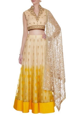 Shaded nude & yellow georgette & tulle resham & zardozi work blouse with skirt & dupatta