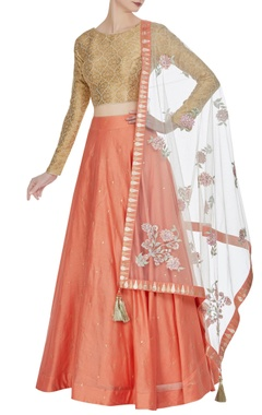Matsya Banarasi embroidered choli with lehenga and parsi dupatta.