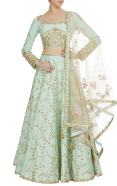 Matsya Sheer back choli with embroidered lehenga and dupatta.
