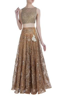 Sequin & pearl tissue lehenga set