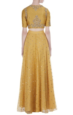 Embroidered crop top blouse with lehenga  and dupatta