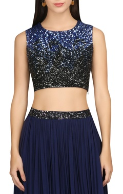 Sequin hand embroidered blouse with pleated skirt