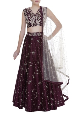 Mishru Embroidered lehenga with blouse & dupatta