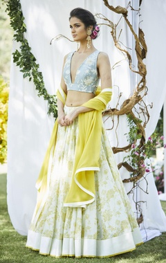 Embroidered lehenga with blouse & dupatta