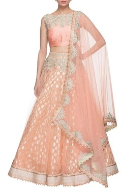 light pink & silver embroidered lehenga set