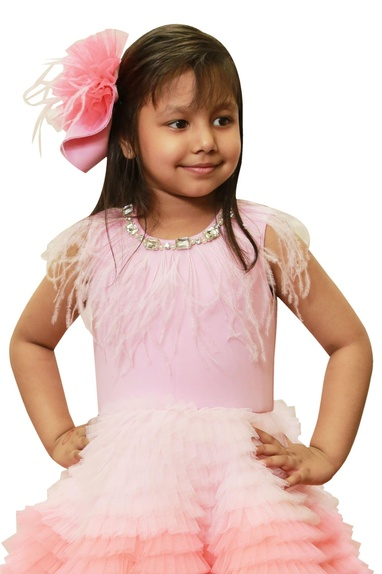 Shaded pink feather dress.