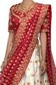 Asha Gautam Gold & red banarasi silk lehenga set