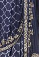 Ritika MirchandaniNavy blue printed & embellished sari