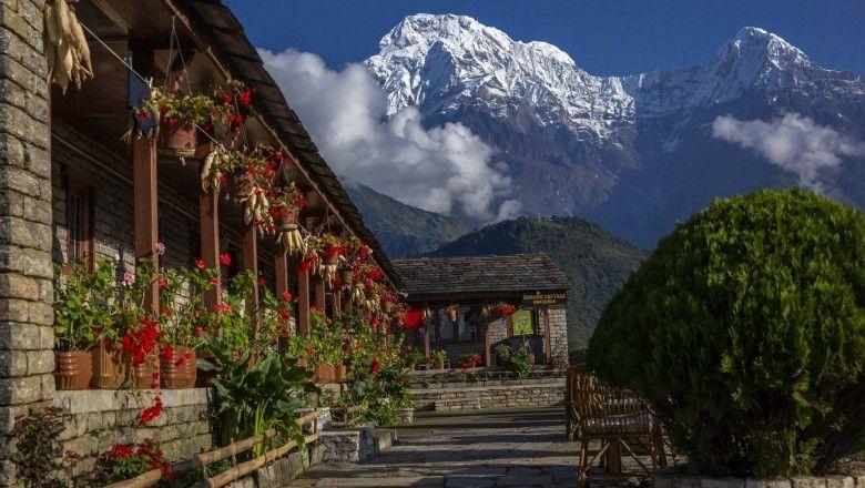 everest-trek-vs-annapurna-trek-a-basic-guide-for-trekkers