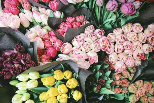 How do I ask for floristry quotes when I don't know what I need?