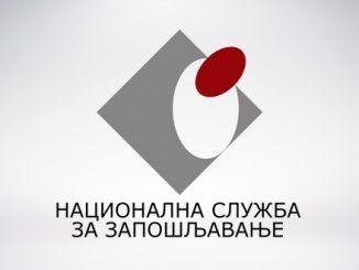 NSZ Logo