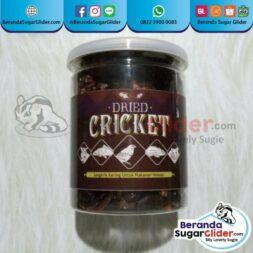Dried Cricket Jangkrik Kering Makanan Hewan Peliharaan Kecil Sugar SG Bajing Kelapa Landak Mini Tupai Terbang Mamalia