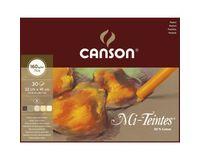 Canson Mi-Teintes 160 GSM 32 x 41 cm Album of 30 Honeycomb & Fine Grain Sheets - Earth Tones