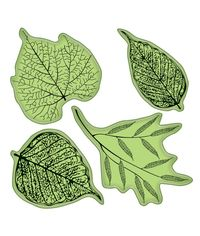 Fossil Leaves Stamping Gear