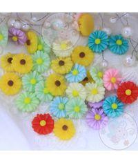 Little Flower - Assorted Color