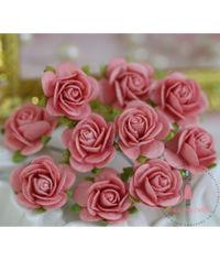 Micro Roses - Peach