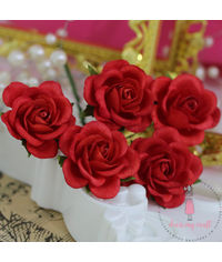 Curved Roses 35 MM -  Red