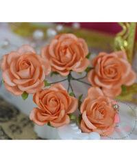 Curved Roses 35 MM - Soft Orange