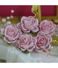 Curved Roses 35 MM -  Baby Pink