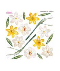 Narcissus - Printed Holographic Film