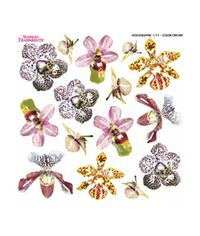 Color Orchid - Printed Holographic Film