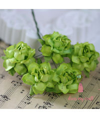 Twisted Roses - Soothing Green