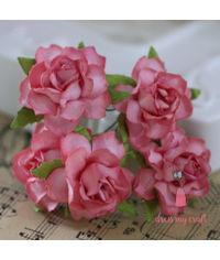 Twisted Roses - Pretty Peach