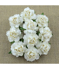Twisted Roses - Ivory