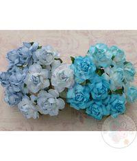 Twisted Roses Combo - Blue Tone