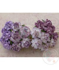 Twisted Roses Combo - Purple/Lilac Tone