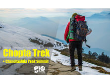 Chopta Snow Trek