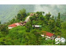 Yuksom Homestay Based Eco-Tour