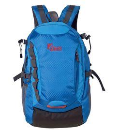 F Gear Fortune 26 Liters Laptop Backpack Sch Bag (Blue)