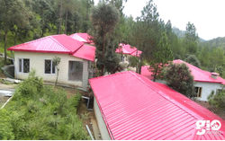 Very best of high mountain scenery & wildlife at Ranikhet & Corbett National Park