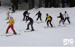 Fun Skiing Auli-3 Days