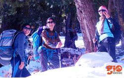 Snow Trek to Kuari Pass & Pangarchula Peak