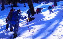 Snow Trek: Kuari Pass