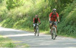 Cycling: Mussoorie - Dhanaulti - Kanatal - Sursingdhar
