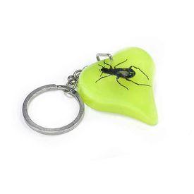 Accedre Luminative Prank Bug Key Chain