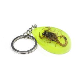 Accedre Luminative Prank Scorpion Key Chain