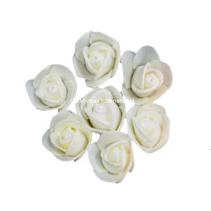 White Foam Flower ( Small)
