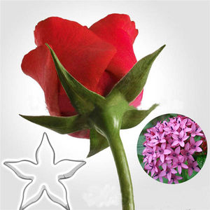 Rose Calyx Cutter
