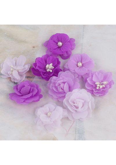 Lady Godivas Grape Ice - Flower