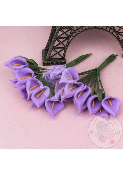 Calla Lily - Purple