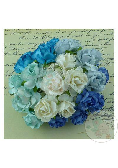 Wild Rose Combo - Blue/Aqua/White