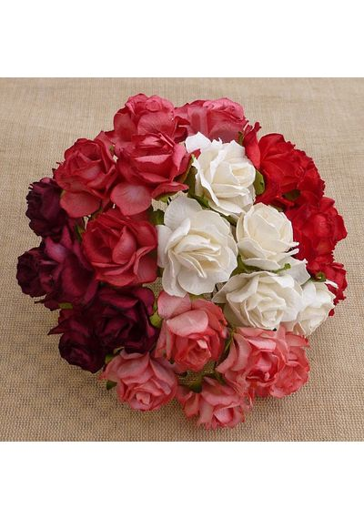 Wild Rose Combo - Red & White