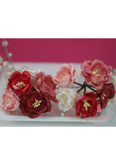 Poppy Rose - Pink & Red Combo